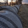 Pasture Hay Rolls For Sale Ex or Can Deliver
