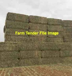 Wheaten Rye Hay 8x4x3 Bales