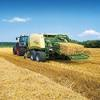 Big square Oaten straw for sale