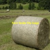 100 5x4 Rolls of Wheaten Hay P 11.4, ME 9.9.
