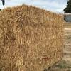1000 Oaten Hay 8x3x3 350-370kg Bales Ex Farm