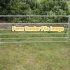Sheep yard Panels Wanted