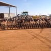 62ft Flexi-Coil 820 Seeder Bar