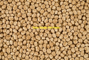 10-15mt Round Lupins for Sale