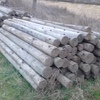 TREATED PINE FENCE POSTS
