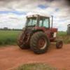 International Tractor 786