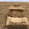 Wheaten Straw 8x4x3 Header Trails + Freight