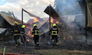 'Suspected activists' set SA Dairy Farmer's shed alight