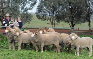 Grassy Creek Merino's to $8000 top
