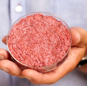 Lab-grown meat: the future of food? By Robbie Sefton