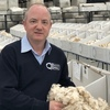 Andrew Partridge joins Quality Wool as new Export Trading Manager