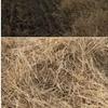 Irrigated Wheaten Straw 8x4x3 Bales