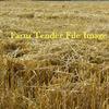 500 Wheat Straw Rolls Shedded