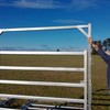 Cattle Yard Panel Gates