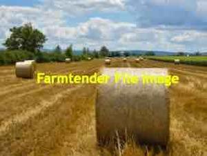 250 x Wheaten Straw 5x4 Round Bales