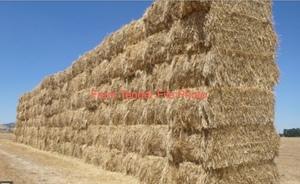 Wheaten Straw 8x4x3 bales