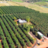Warakirri Diversified Agriculture fund has received as 'Approved' by Zenith Investment Partners