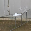 Single Lamb Marking Cradle with Gate Wanted
