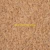150 MT Milling oats seed. Ex Farm Storage.