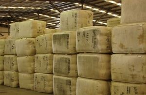 Gains in the Wool market today