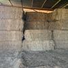 2018 Vetch Hay