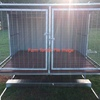 Raised Dog Kennels Wanted 3-5 Berth