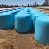 600 x Rye and Clover Silage Bales