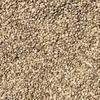 Shirohie Millet - 16 T ## Bird Seed ##