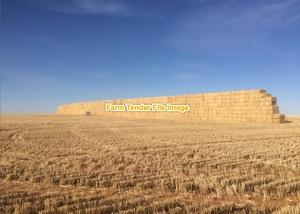 Barley straw  150 mt
