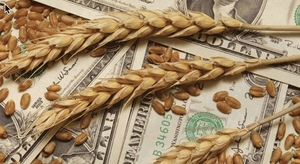 Wheat, oat futures big lift in the US