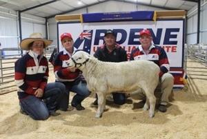 Ardene Australian Whites to $7500