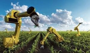 Bots, Crops & Jobs