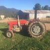Massey Ferguson 65 Tractor - Machinery & Equipment
