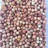 PBA Wharton Field Peas