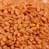 SFWR Wheat For Sale Ex Farm