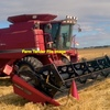 Case IH 2388 Rice Special Header Wanted