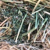 Q31 Lucerne Small Square Bales For Sale,