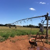 Center pivot 150meters excellent working now