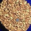 150mt No2 / Feed Rana Faber Beans For Sale ex or Deliver