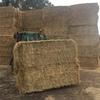 Rye Grass Hay 8x3x3 - 180 x 320 KG Approx Bales