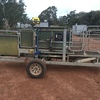 Racewell 3 way auto draft sheep handler