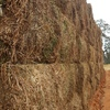 600mt Good Vetch Hay For Sale in 8x4x3's