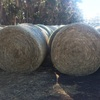 Rye Grass and Clover Hay 5x4 Round Rolls