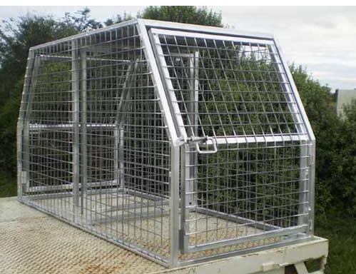 Kurraglen Ind Dog Crate 50 X 50mm Livestock Dogs For Sale
