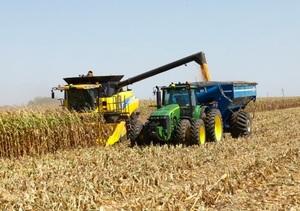 Mecardo Analysis - WASDE Whammy on Corn