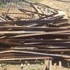 Second hand steel posts