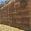 300mt Barley Straw 640kg 8x4x3 Bales