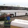 1986 MAN Tandom Drive Bus suitable camper