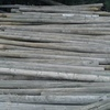 500 x 10ft x 4inch Broken Pine Posts