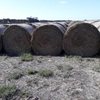 Under Auction - Oaten hay for sale 50 - 5x4 rolls. 2019 season - Sold Per Bale